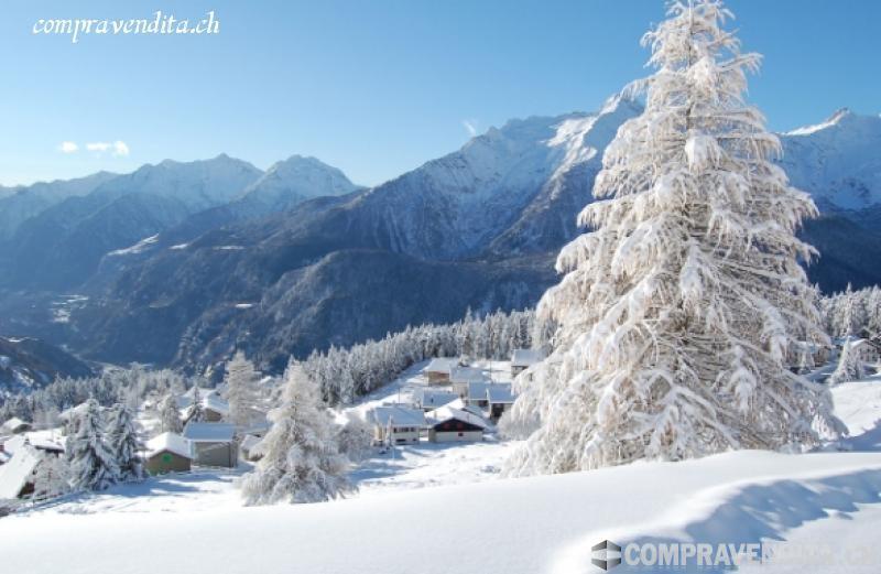 Struttura Alberghiera Top in Ticino StrutturaAlberghieraTopinTicino.jpg