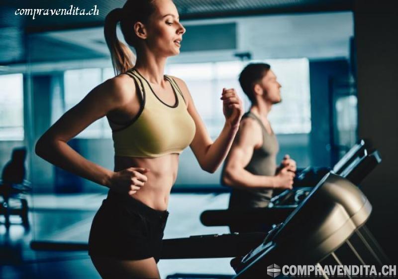 Vendesi centro fitness in Ticino VendesicentrofitnessinTicino.jpg