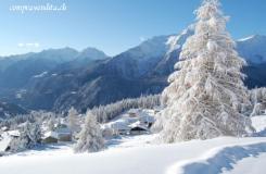 Struttura Alberghiera Top in Ticino